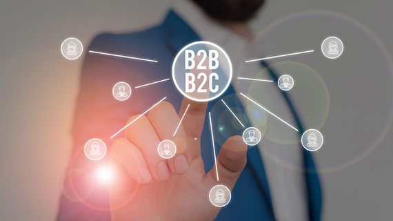 Digital Commerce Solutions for the B2B2C Market